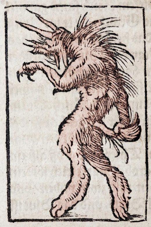 munster wer-wolf werewolf